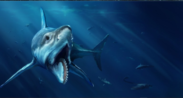 gambar helicoprion